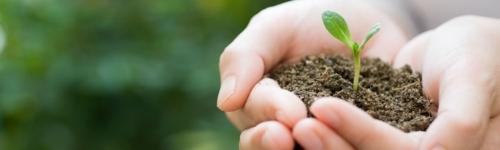 ISO 14001 Conozca como debe aplicar los requisitos para un sistema de gestión ambiental