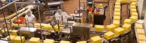 HACCP Cursos para que la organización pueda identificar peligros específicos y medidas para su control con el fin de garantizar la inocuidad de los alimentos